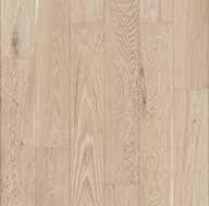 Macaria Oak